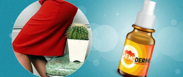 В инструкции по применению Гемодерм говорится, что профилактику геморроя проводят распрыскивая спрей утром и вечером на чистую кожу вокруг ануса