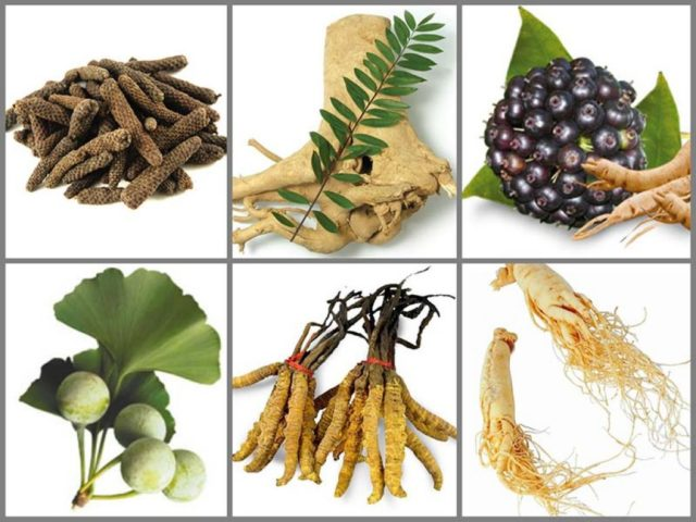 Эти растения можно встретить лишь на отдаленных и малозаселенных территориях нашей планеты