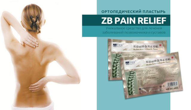 Практически каждый человек в своей жизни сталкивается с заболеваниями спины, шеи, позвоночника