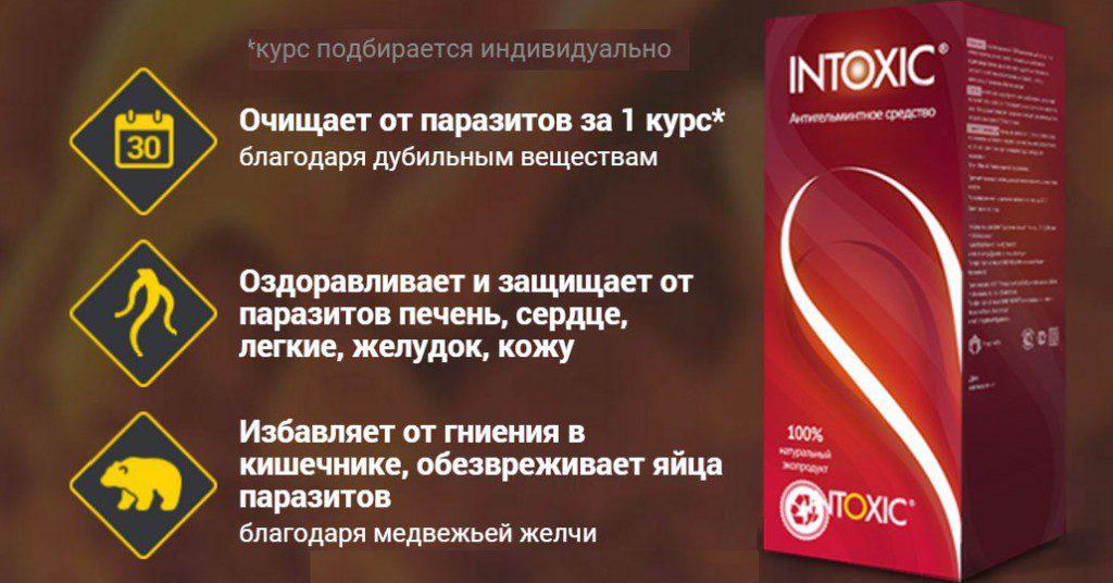Ингредиенты, которыми насыщена формула такого препарата, как противопаразитарное средство Интоксик, обладают великолепной синергией, усиливая действие друг друга