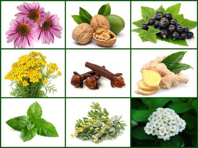 В составе присутствуют исключительно натуральные компоненты, нет ГМО, а это значит, что никакого вредного воздействия на организм они не оказывают
