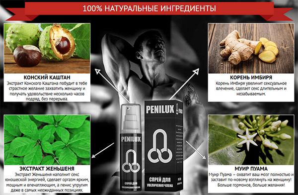 Натуральные компоненты в составе геля активизируют выработку мужских гормонов, от уровня которых и зависит развитость половых органов